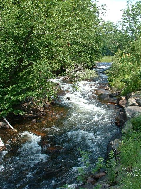 Portage Lake 025
